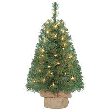 Holiday Time 2ft Pre Lit Noble Fir Green Artificial Christmas Tree With 35 Clear Lights