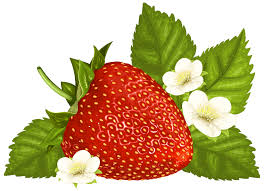 Strawberry clipart image