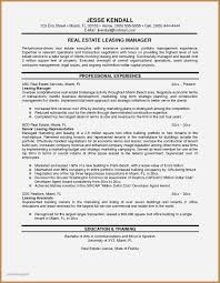 Real Estate Resume Examples Fresh Sales Representative Free