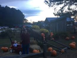 Mikes Pumpkin Patch Jacksonville Nc by Mike U0027s Farm It U0027s Kind Of A Must See Place Around Here Topsail