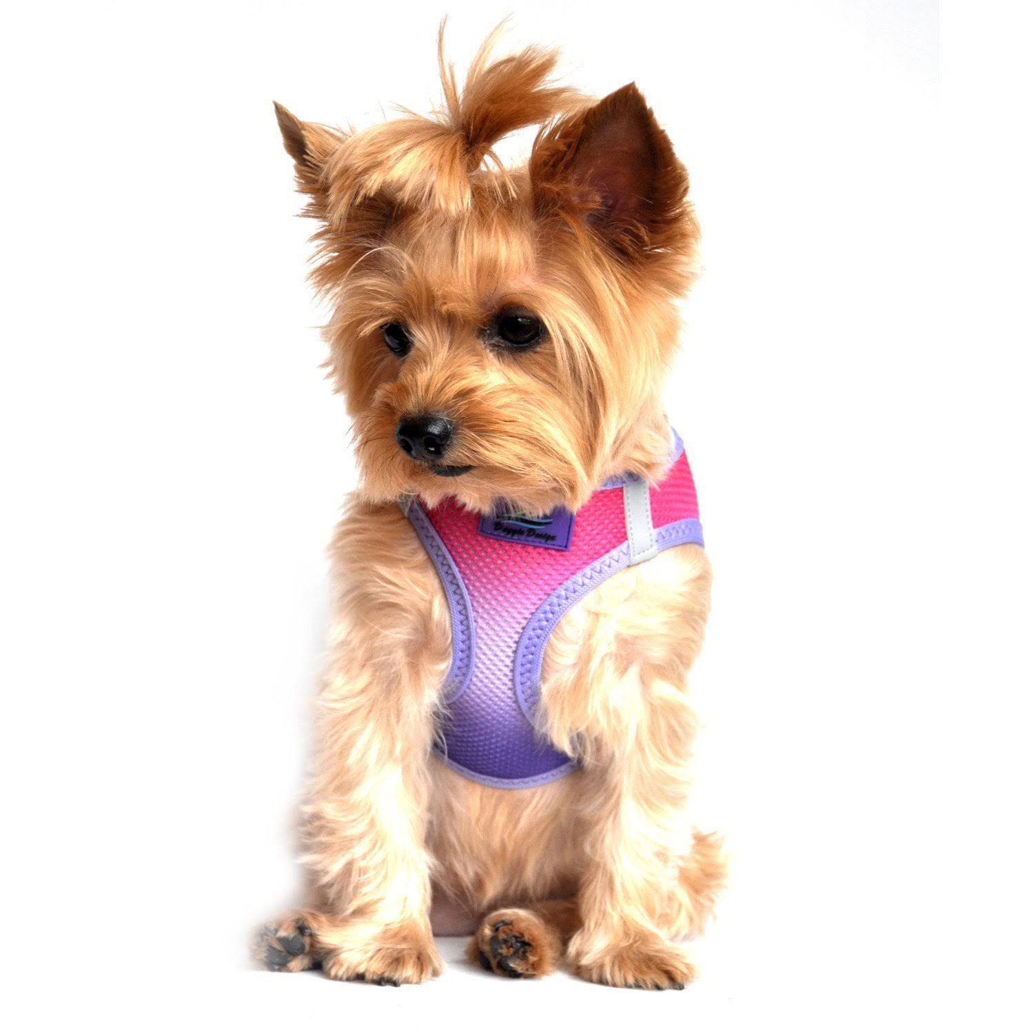 American River Choke-Free Dog Harness - Raspberry Sundae Ombre Medium