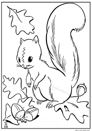 Autumn Fall Coloring Pages Free Online 7