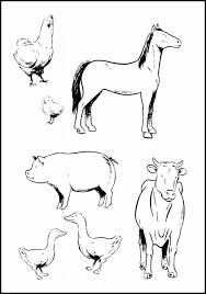 Printable Animal Pictures For Preschoolers Farm To Color Coloring Pages Free Cards