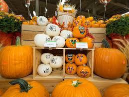 Pick Of The Patch Pumpkins Concord by Publix Publix Twitter