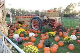 Pumpkin Farm In Palos Hills by About The Pumpkin Patch Festival