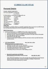Examples Works Now Example From Areas Participation Resume Hobbies And Interests