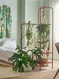 mit pflanzen dekorieren natur für dein zuhause ikea schweiz