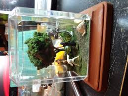 Star Wars Fish Tank Decorations by Diy U2013 Star Wars Diorama