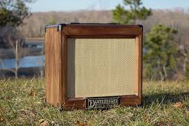 Empty 1x10 Guitar Cabinet by Dominion Custom Cabs 1x10