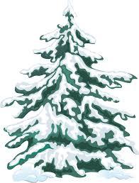 Fir Tree clipart winter 10