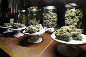 Denver Recreational Dispensary I Northern Lights Cannabis