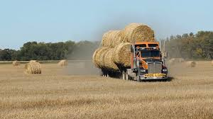 Big Orange Truck Loaded With Hay Bales Crossing A Field At Speed ... Filerefueling Hay Truckjpg Wikimedia Commons Highway 99 Reopens In South Sacramento After Hay Truck Fire Fox40 Semi Truck Load Of Kims County Line Did We Make A Small Stock Image Image Biological Agriculture 14280973 Boys Life Magazine Old With Photo Trucks Rusty 697938 Straw Trailers Mccauley Richs Cnection Peterbilt 379 At Truckin For Kids 2013 Youtube Hay Train West Coast Style V1 Truck Farming Simulator 2019 John Deere Frontier Implements Landscape Mowing Dowling Bermuda Celebrity Equine Llc