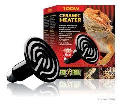 Bearded Dragon Heat Lamp Wattage by Reptile Heating U0026 Lighting Petland Canada