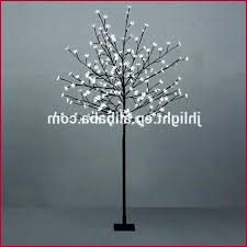 Spiral Lighted Christmas Trees Outdoor by 100 Lighted Spiral Christmas Tree Outdoor Accessories Light