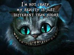 cat quotes cheshire cat quotes study guides and book summaries