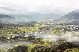 100 Birdview Of Oilseed Rape Fields In China