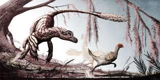 Three Feathered Dinosaurs The Famous Dromaeosaurid Velociraptor Mongoliensis Chases A Juvenile Oviraptorosaur Citipati Osmolskae