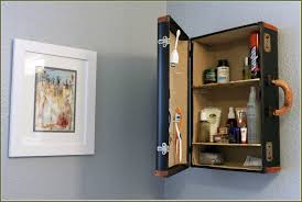 Home Depot Recessed Medicine Cabinets by Medicine Cabinet Replacement Shelves Home Depot Best Home