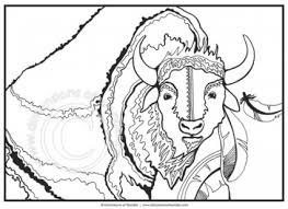 Native American Coloring Pages Buffalo Tatanka In Symbols