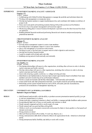 Download Investment Banking Analyst Resume Sample As Image File