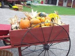 Pumpkin Farms In Bay County Michigan by Gust Brothers Pumpkin Farm Hay Rides And Pumpkin Farm