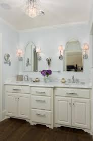 Bathroom Double Vanity Lights by Photos Hgtv Light Blue Traditional Master Bathroom With Double