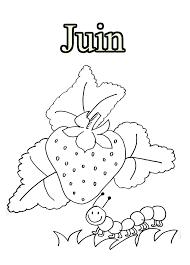 Livre Coloriage Pour Les Enfants Bouquets Tulipes Élevage Porcin