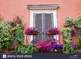 Europe Italy Rome Apartment Flats Housing Balcony Flowers