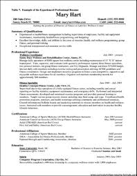 Resume Format For Experienced It Professionals Pdf Spectacular Sample Professional