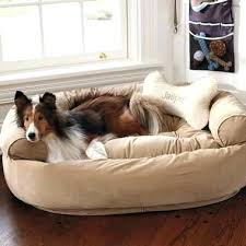 couch bed for dogs – dkkirova