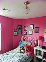 Pink Zebra Accessories For Bedroom by Cool 20 Pink Room Design Decoration Of Best 10 Pink Room
