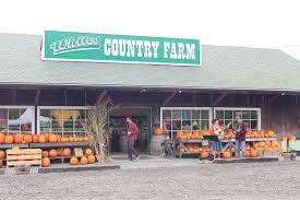 Jacksonville Oregon Pumpkin Patch by White U0027s Country Farm Medfordmom