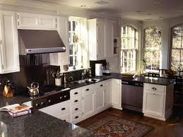 Sink Window Treatment Ideas U Shaped Kitchen Designs Pull Out Faucet Lacquered Cabinet