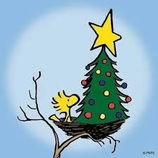 Charlie Brown Christmas Tree Quotes by 1759 Best Oh Charlie Brown Images On Pinterest Beautiful Lucy