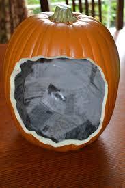Carvable Foam Pumpkins Ideas by Closet Crafter Pumpkin Shadow Box