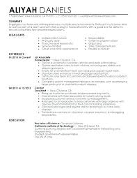 Example Of A Profile For Resume Section Examples