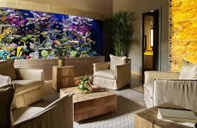 Shaq Superman Bed by The 1 Million Aquarium Customized Fish Tanks As Home Decor Wsj