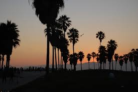 California DreaminNope Its Real