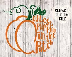 Kc Pumpkin Patch Winery by Cutest Pumpkin In The Patch Svg Pumpkin Svg Kids Halloween