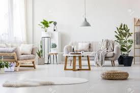 100 Couches Images Stylish Living Room With Two Grey Fresh Plants And Wooden