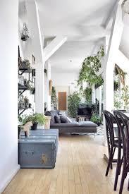 licht wohnzimmer urbanjungle pflanzen vintage