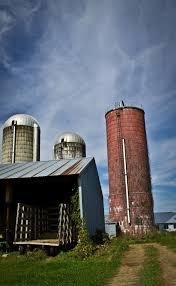 Christmas Tree Farms Albany County Ny by Montgomery County Ny Real Estate Company Inglenook Real Estate