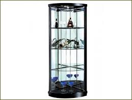 Storage Small Hanging Display Case Horizontal Glass Wall Shelf Perspex Mounted Jewelry Cases
