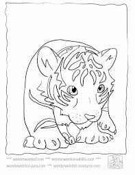 Full Size Of Animaleasy Coloring Pages Zoo Free Printables For Kids Printable