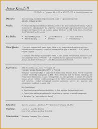 Professional Summary For Customer Service Resume Professional 25 ...
