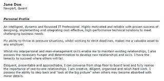 How To Write A Professional Summary For A Resume by Resume Professional Summary Inssite