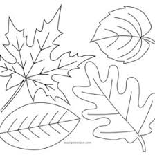 Fall Leaves Coloring Pages Online Page 1