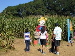 Columbus Pumpkin Patch by Admission Rates To Fall Fun At Uncle Shucks Pumpkin Patch And Corn