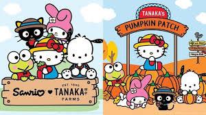Pumpkin Patch Irvine University by Tanaka Farms Hello Kitty Irvine Sweet Nbc Southern California