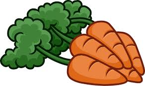 carrot bunch clipart